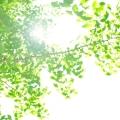 Baidu IME_2015-6-17_15-50-6